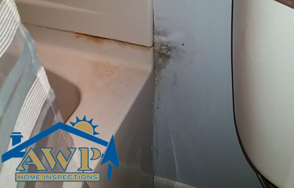 Signs of moisture and water damage