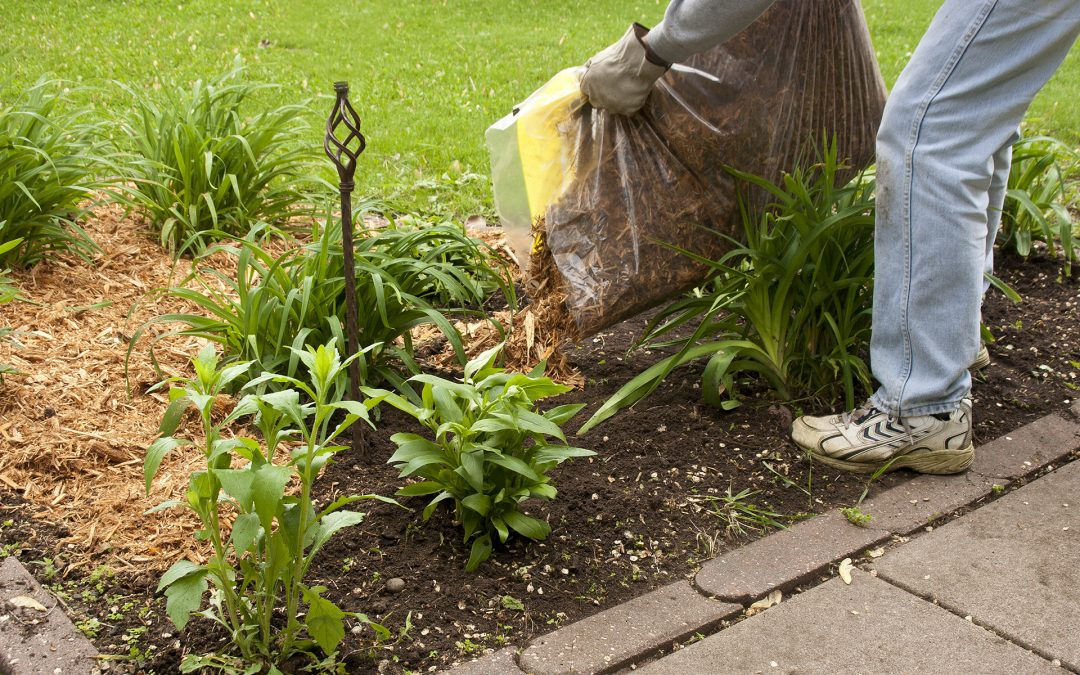 outdoor home maintenance tasks